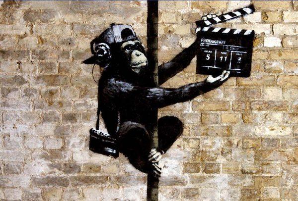 B_monkey20x30