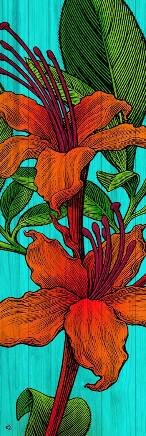 B_fiore arancio_150x50